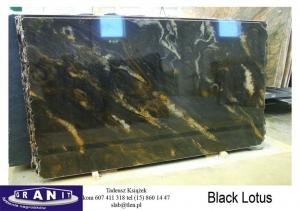 Black-Lotus-2